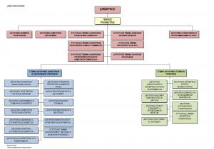 Οργανόγραμμα υπηρεσιών Δήμου Θεσσαλονίκης